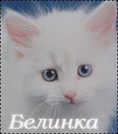 Белинка