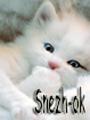 snezh-ok