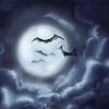 Shedou (Shadow) Morbius