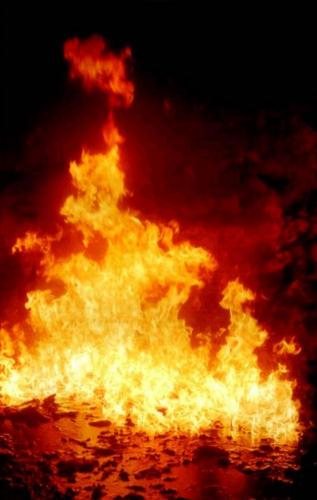 Огнедым