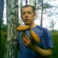 Gribniki Donbassa