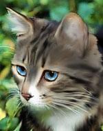 Голубоглазая
