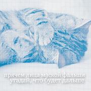 Мяушка Крылья Феникса