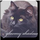 Gloomy Shadow