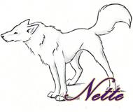 Нэтти