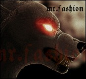 mr.fashion