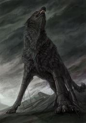Тёмный ворон