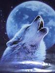 Белая Волчица_13
