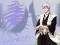 Gin)ichimaru