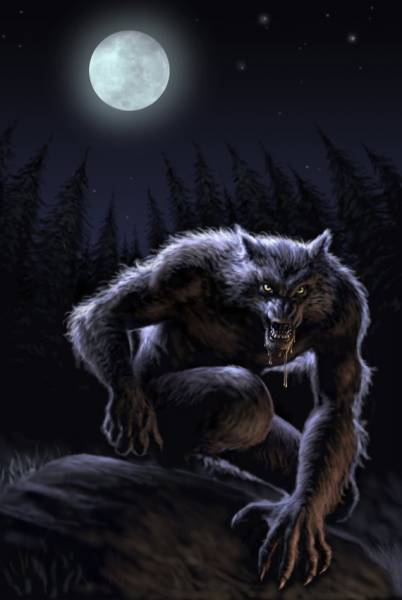 wolfius
