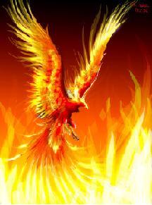 Phoenix X