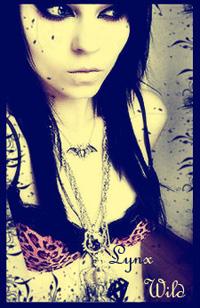 Lynx_Wild