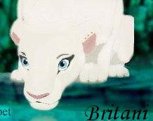 Britani