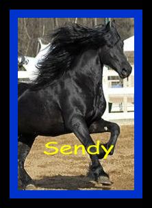 Сенди