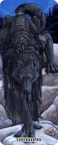 Kali Wow