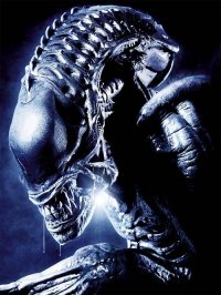 Alien 7
