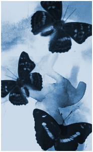Адская бабочка