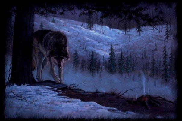 Волчица черной крови
