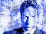 The_Mulder