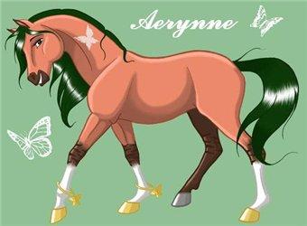 Aerynne