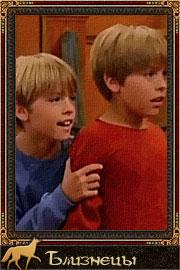 Стиви и Эдди