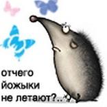 Ежик Жик