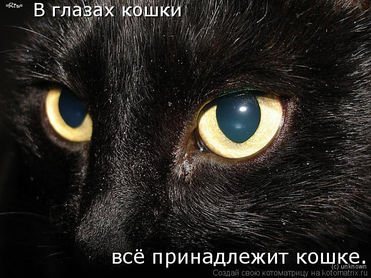Черноушка