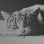 Эммили