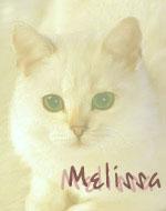 Меллиса