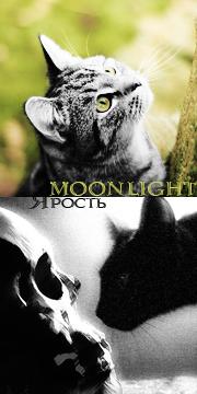 Moonlight|Ярость