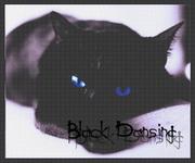 Black Dansing