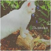 Льдинкa