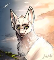 Белый Волк (х)