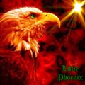 Little Phoenix