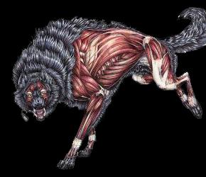 -Сreature-[Тварь]-