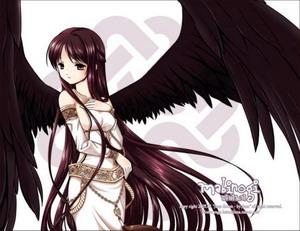 ♥ANGEL♥