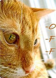 [.Off.]