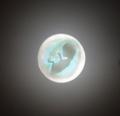 Лунный ребёнок