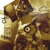Gossip Owl