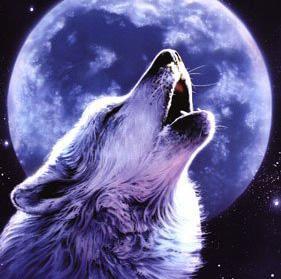 Луналия