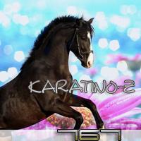 Karatino-Z 767