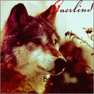 Gaerlind
