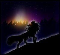 черная ночь***