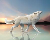 Лунная Волчица