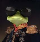 Генерал Жаба