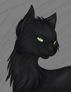 Темноглаз