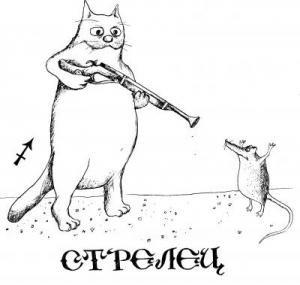 Про100 Кошка