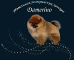 Damerino