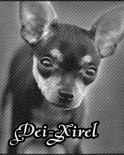 Dei-Xirel