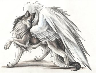 Волчица-ангел